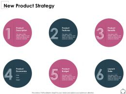 New Product Strategy Product Budget Ppt Powerpoint Infographic Template