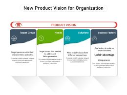 New Product Vision For Organization