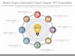 New Search Engine Optimization Expert Diagram Ppt Presentation