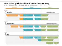 New Start Up Three Months Swimlane Roadmap