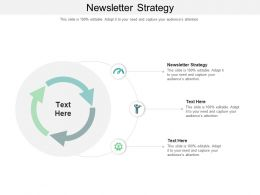 Newsletter Strategy Ppt Powerpoint Presentation Infographics Themes Cpb
