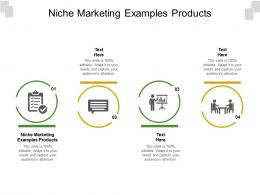 Niche Marketing Examples Products Ppt Powerpoint Presentation Inspiration Slide Cpb