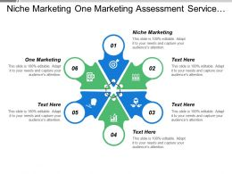 Niche Marketing One Marketing Assessment Service Traditional Marketing