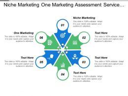 Niche Marketing One Marketing Assessment Service Traditional Marketing