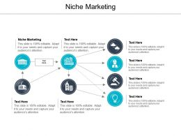 niche_marketing_ppt_powerpoint_presentation_file_objects_cpb_Slide01
