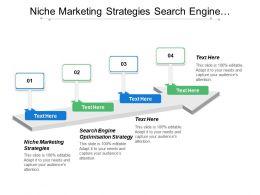 Niche Marketing Strategies Search Engine Optimisation Strategy E Marketing Strategies Cpb