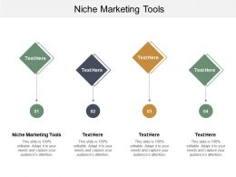 Niche Marketing Tools Ppt Powerpoint Presentation File Slideshow Cpb
