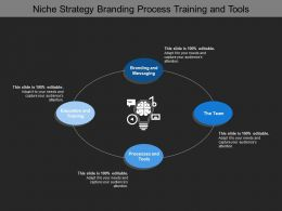 Niche Strategy Branding Process Training And Tools