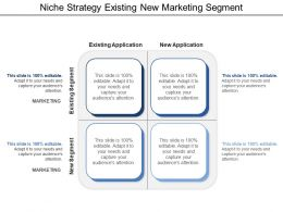 Niche Strategy Existing New Marketing Segment
