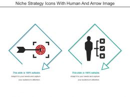 Niche Strategy Icons With Human And Arrow Image