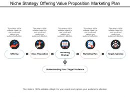 Niche Strategy Offering Value Proposition Marketing Plan