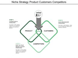 Niche Strategy Product Customers Competitors