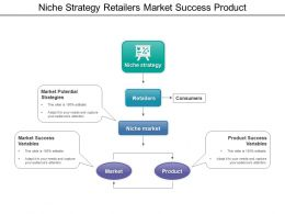 Niche Strategy Retailers Market Success Product
