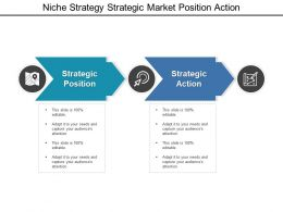 Niche Strategy Strategic Market Position Action