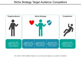 Niche Strategy Target Audience Competitors