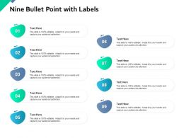 Nine Bullet Point With Labels