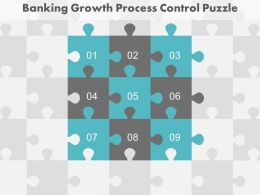 Nine Staged Banking Growth Process Control Puzzle Diagram Powerpoint Slides