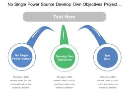 No Single Power Source Develop Own Objectives Project Teams