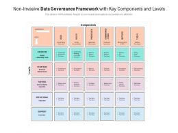 Non Invasive Data Governance Framework With Key Components And Levels
