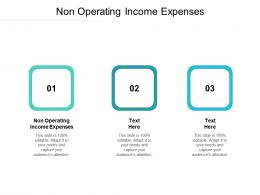 Non Operating Income Expenses Ppt Powerpoint Presentation Outline Visuals Cpb