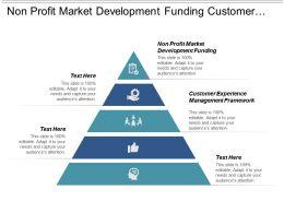 non_profit_market_development_funding_customer_experience_management_framework_cpb_Slide01