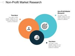 Non Profit Market Research Ppt Powerpoint Presentation Pictures Design Inspiration Cpb