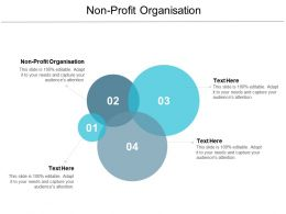 Non Profit Organisation Ppt Powerpoint Presentation File Smartart Cpb