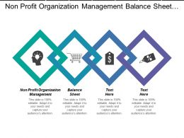 Non Profit Organization Management Balance Sheet Content Management Cpb