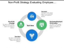 Non Profit Strategy Evaluating Employee Performance Balance Sheet Cpb