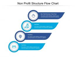 Non Profit Structure Flow Chart Ppt Powerpoint Presentation Layouts Background Images Cpb