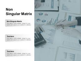 Non Singular Matrix Ppt Powerpoint Presentation Show