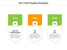Non Trade Payables Examples Ppt Powerpoint Presentation Icon Infographics Cpb