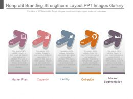Nonprofit Branding Strengthens Layout Ppt Images Gallery