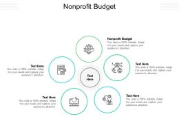 Nonprofit Budget Ppt Powerpoint Presentation Show Example File Cpb