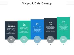Nonprofit Data Cleanup Ppt Powerpoint Presentation Outline Professional Cpb