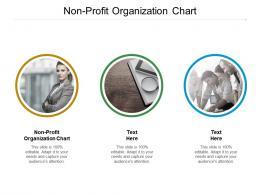 Nonprofit Organization Chart Ppt Powerpoint Presentation Pictures Design Templates Cpb