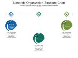 Nonprofit Organization Structure Chart Ppt Powerpoint Presentation Infographics Design Ideas Cpb