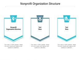 Nonprofit Organization Structure Ppt Powerpoint Presentation Pictures Graphics Cpb