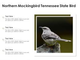 Northern Mockingbird Tennessee State Bird