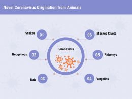 Novel Coronavirus Origination From Animals Masked Ppt Powerpoint Presentation Portfolio Model