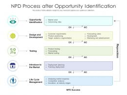 NPD Process After Opportunity Identification