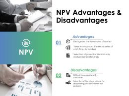 Npv Ppt Professional