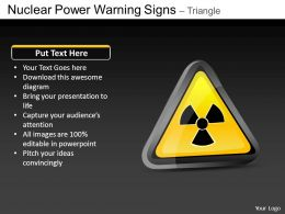 Nuclear Power Triangle Powerpoint Presentation Slides DB