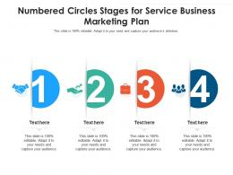 Numbered Circles Stages For Service Business Marketing Plan Infographic Template