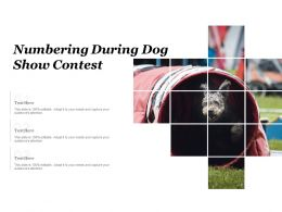 Numbering During Dog Show Contest