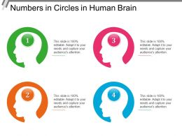 Numbers In Circles In Human Brain