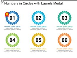 Numbers In Circles With Laurels Medal
