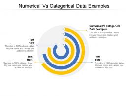 Numerical Vs Categorical Data Examples Ppt Powerpoint Presentation Pictures Graphics Design Cpb