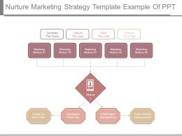 Nurture Marketing Strategy Template Example Of Ppt
