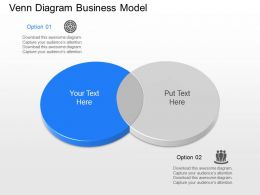 nv Venn Diagram Business Model Powerpoint Temptate